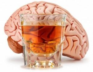 cerebro e alcool