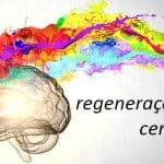 Regeneração Cerebral É Uma Realidade